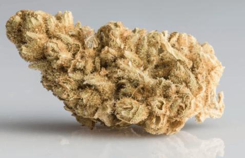 Bad Quality Cannabis Flower